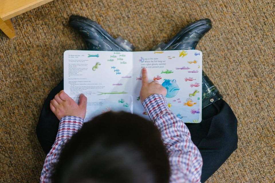 Wiersze Dla Dzieci Jeśli Tak To Jakie Wąchając Książki